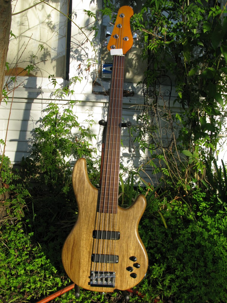 Subway Custom Fretless 5-String Bass