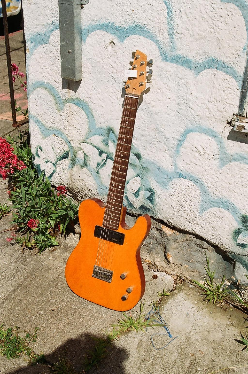Custom Sub 7 String hollow tele w' Alembic electronics
