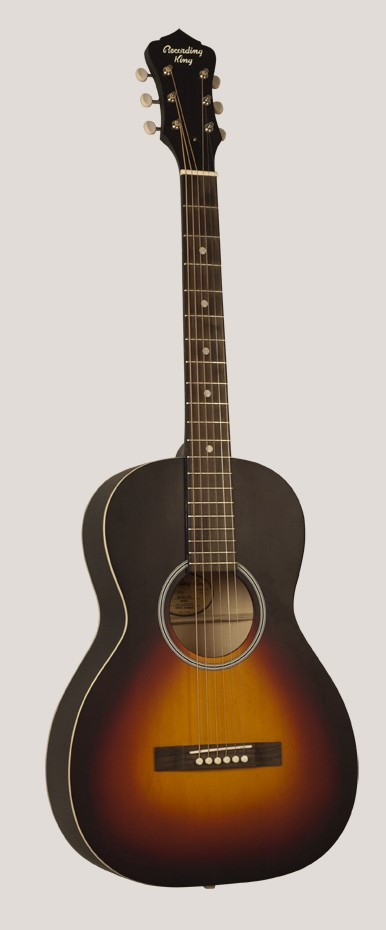 $200 RPH05 Recording King 0-sized 12-fret parlor with Kluson tuners styled like a '30's gibson