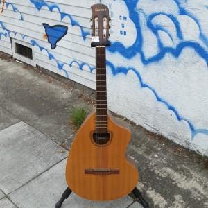 Brazilian Rosewood craviola thalidpmide guitar circa 1970 $700
