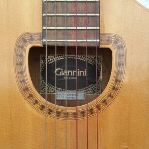 Brazilian Rosewood craviola thalidomide guitar circa 1970 $700