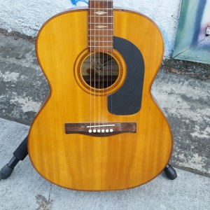 Brazilian Giannini 00-28 Brazilian Rosewood back and sides 1970 $250