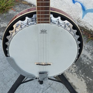 Savannah 5 string fancy Banjo $300