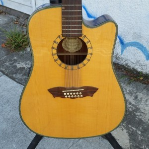 Fancy Washburn 12 string  Grover gears $300