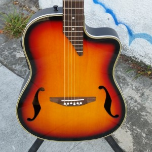 Ugly FatDog bowl back with tele neck with pickups electric acoustic $250